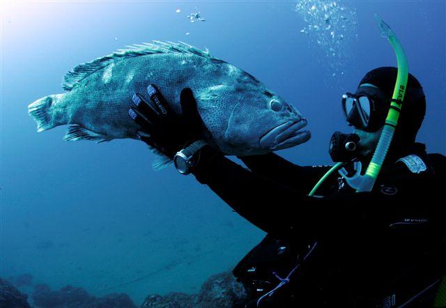 Submarinismo en busca de aventura